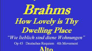 How Lovely-Brahms-Alto .wmv