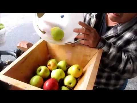 Making Cider the Old Fashioned Way