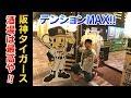 【球団公式】阪神タイガース酒場に行ってみたらテンション上がりまくった!これぞ阪神ファンの第2の聖地や!