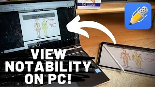 How to VIEW Notaḃility Notes on your Windows PC