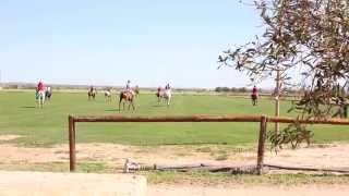 Engel & Völkers Poloschool