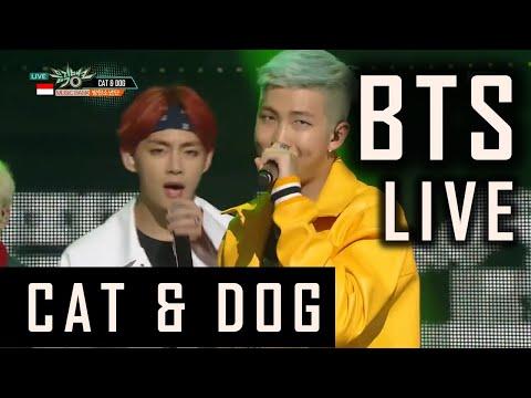 bts-(방탄소년단)---cat-&-dog-(txt)-live-performance