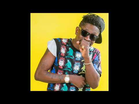 Shatta Wale - See Da Fool (Audio Slide)