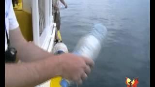 Рыбалка на Мальдивах(Материал, отснятый участниками экспедиции