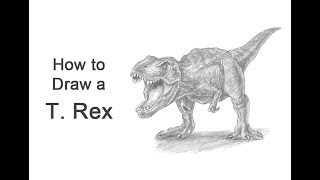 How to Draw a Tyrannosaurus rex (T. Rex) Roaring