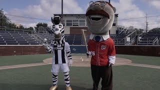 Juventus vs Washington Nationals #MascotChallenge | #CONTAJUS