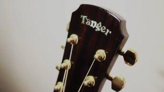 tanger guitar td35 test moon river cover