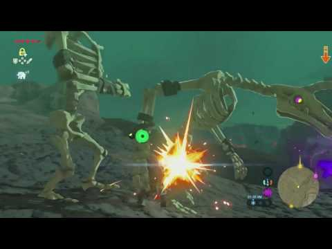 Zelda: Breath of the Wild - Pt59