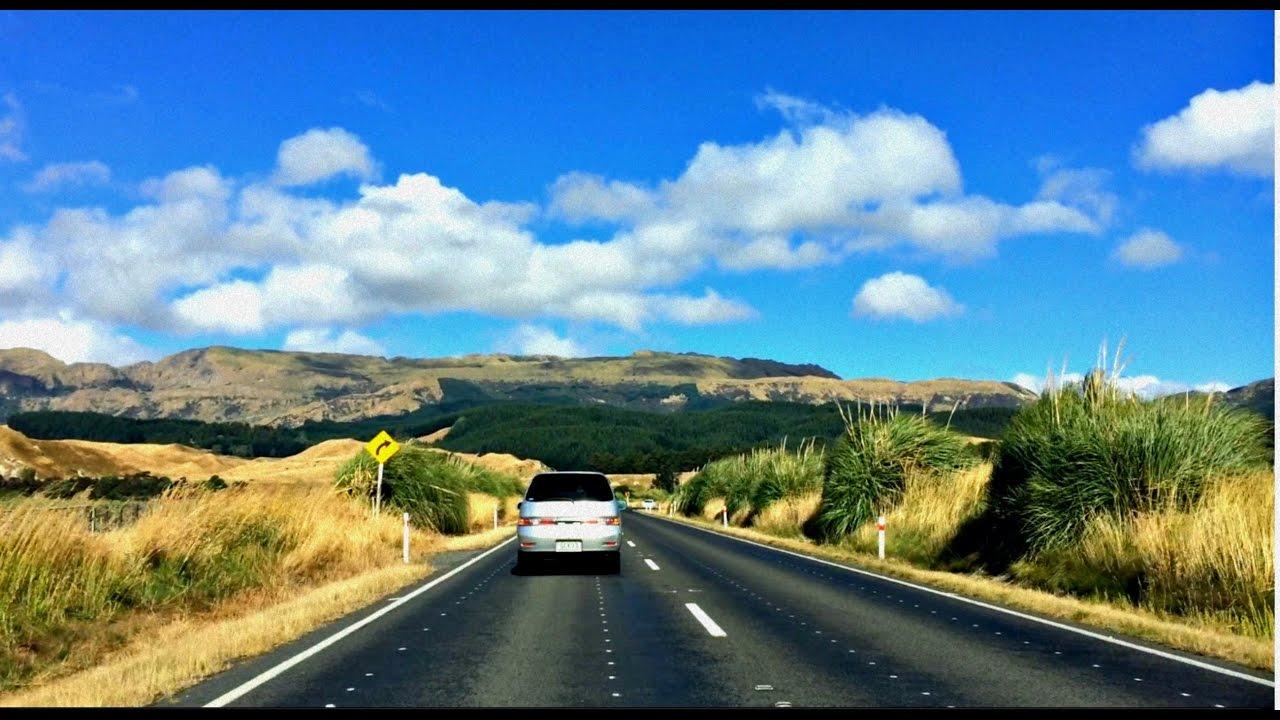 Расстрел в Новой Зеландии Pinterest: Жизнь в Новой Зеландии