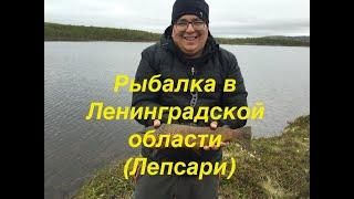 Рыбалка в Ленинградской области Лепсари