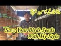 How To Save Bird Seeds With My Style  How To Feed a Birds[hindi/urdu]