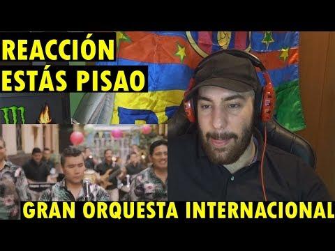Gran Orquesta Internacional - Estás Pisao (Video Oficial) (REACCIÓN)