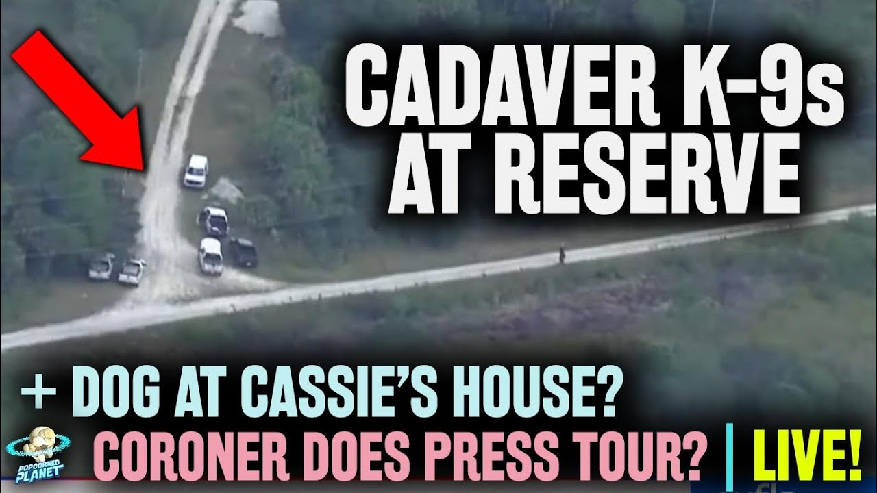 BREAKING Brian Laundrie Search: Cadaver K9'at Reserve + Dog @ Cassie House | Gabby Petito Case