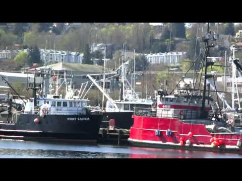 NW Superyachts & Alaska Fishing Boats in the Seattle Ship Canal by Salty Dog Boating News