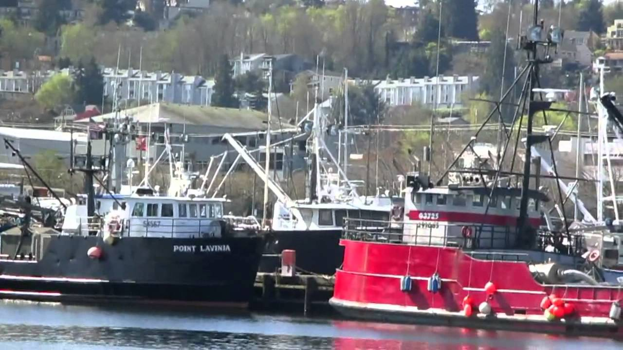Nw Superyachts Alaska Fishing Boats In The Seattle Ship