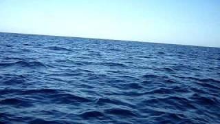 広いです・・青いです・・・ 魚が釣れたらもっといいのに~~(笑)