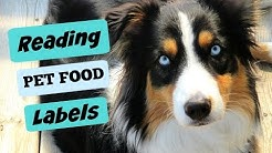 Nutrition 101: Reading Your Dog's Food Label |Life With Aspen|