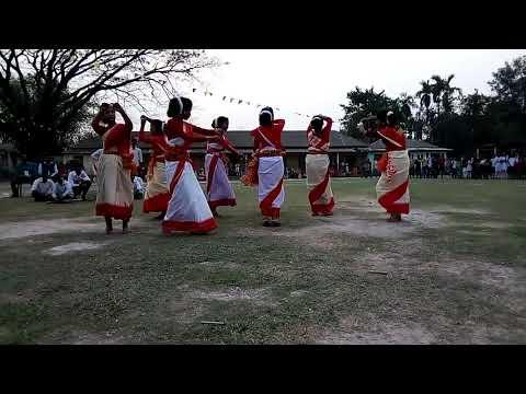 Assam Deser Chai ke bagan