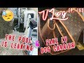 The Pools Leaking & Fake LV Dog Carrier | Vlog Ep. 163