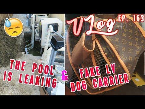 The Pools Leaking & Fake LV Dog Carrier | Vlog Ep. 163