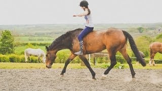 Teaching your horse to ride with no tack. [tackless riding tutorial]