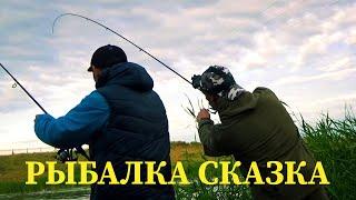 Закинул СПИННИНГ и ПОНЕСЛОСЬ Рыбалка на спиннинг летом 2021 Ловля ОКУНЯ ТОРПЕД