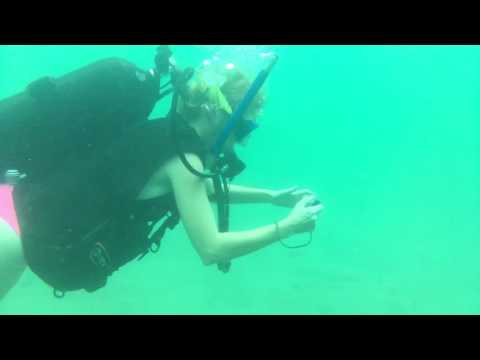 Ali scuba diving blue heron