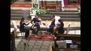 "Bedrich Smetana - String Quartet ""From my life"" mov. 1 Allegro vivo appassionato"
