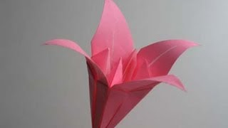 Origami Lily