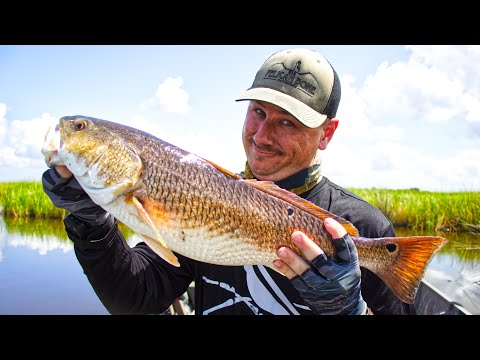 SIGHT FISHING For REDFISH In Less Than Ideal Conditions ( Louisiana Redfish Limit )