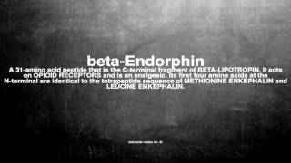 Medical vocabulary: What does beta-Endorphin mean