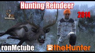 theHunter Reindeer gameplay