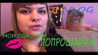 VLOG:Мои покупки/У нас пополнение/Попрошайка