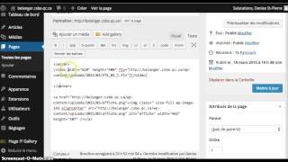 Centrer une vidéo dans Wordpress