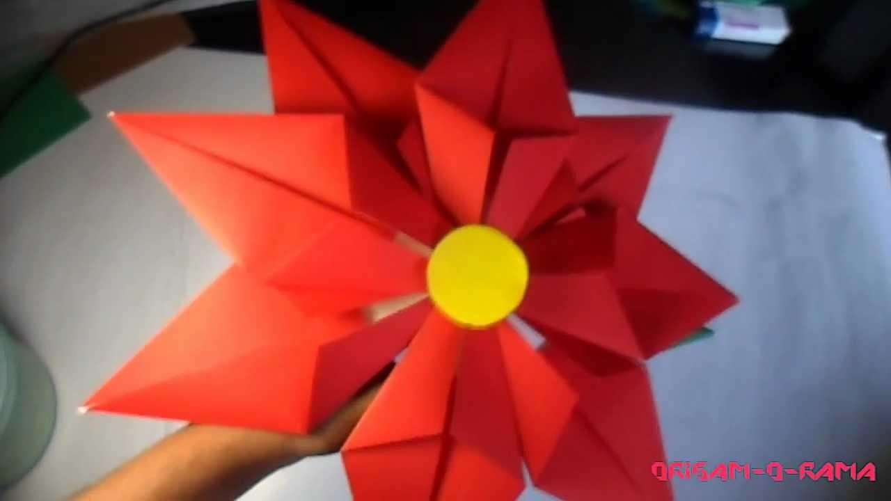 Preview Flor De Noche Buena Youtube