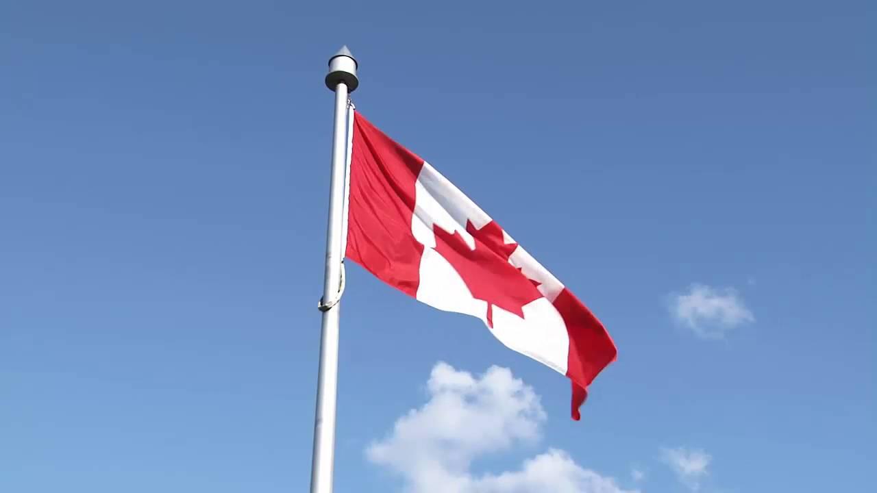 free stock video footage canada flag waving blue sky birds