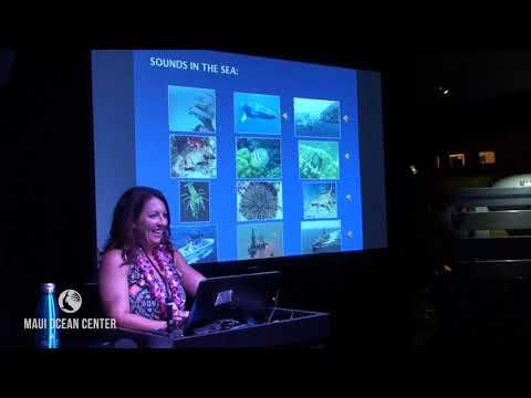 Sea Talk: Eden Zang- EARs in the Sea