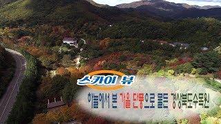 [스카이뷰] 가을 단풍으로 물든 경상북도수목원