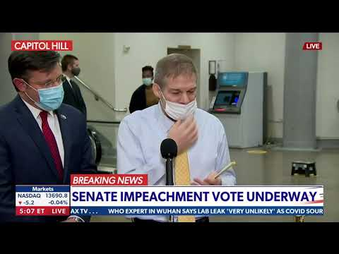 Reps. Jim Jordan & Mike Johnson sound off on impeachment trial | Newsmax TV