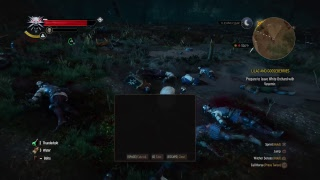 Witcher 3 Killing Monsters