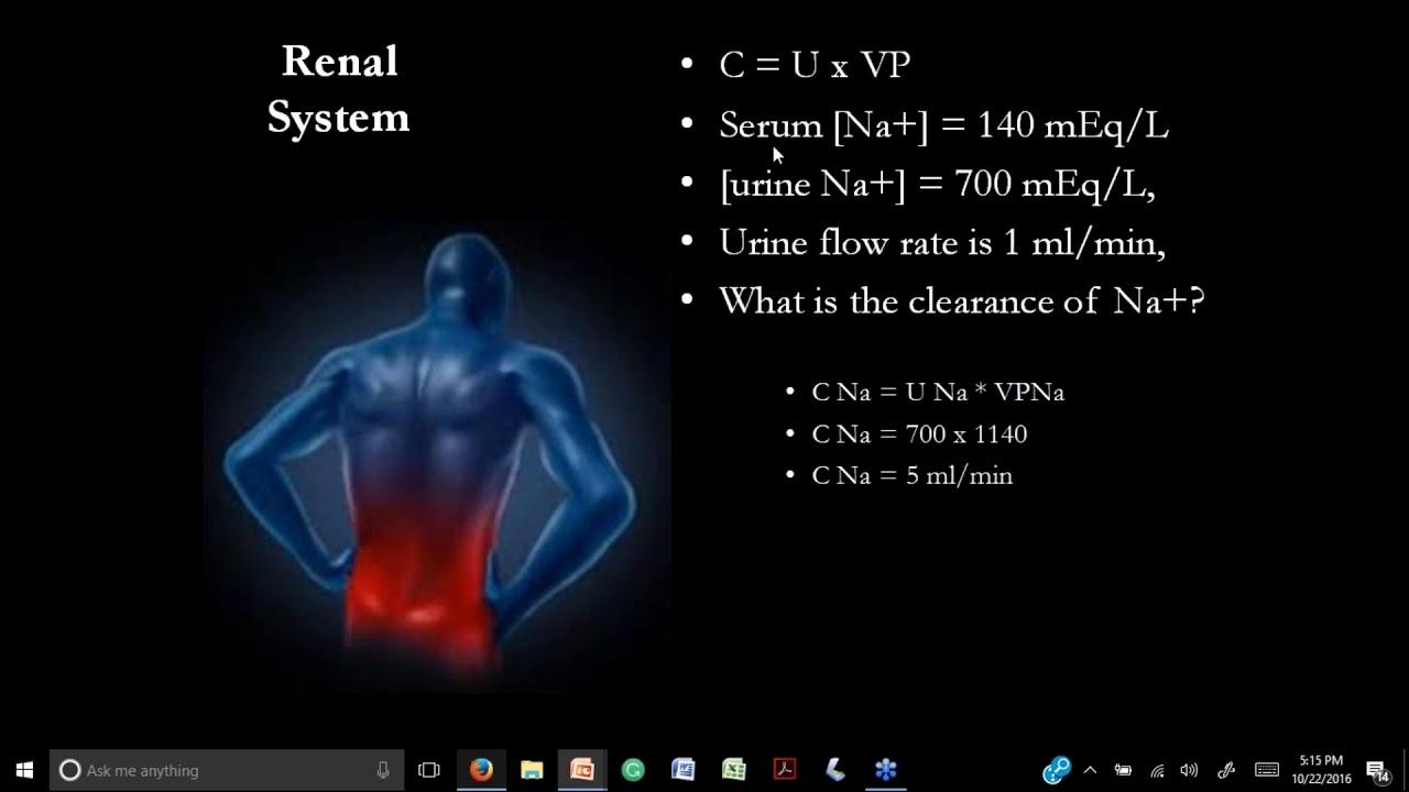 Advanced Anatomy And Physiology | www.imagenesmy.com