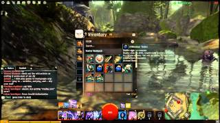 Guild Wars 2 Limited edition Items