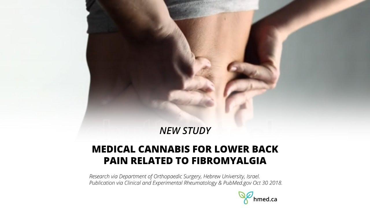 Study - Medical Cannabis for Fibromyalgia - Harvest Medicine