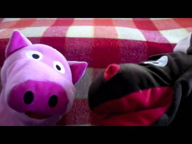 Pig Sings a Love Song