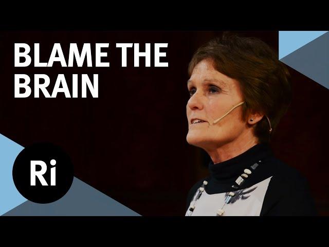 Male brain vs female brain: Is there a difference? — Quartz