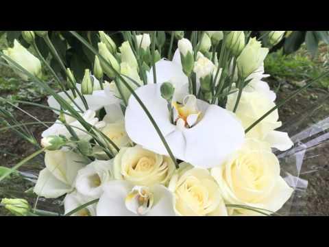 Virginie Sartis Fleuriste Urcuit 64990