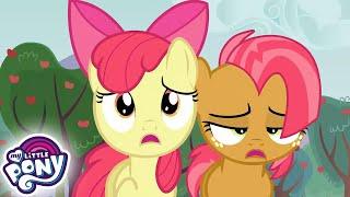 My Little Pony en español  La Reunión de la Familia Apple | La Magia de la Amistad | Completo