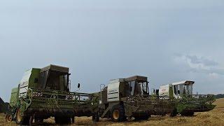 Żniwa 2014 w Gospodarstwie Rolnym Mokrzyn