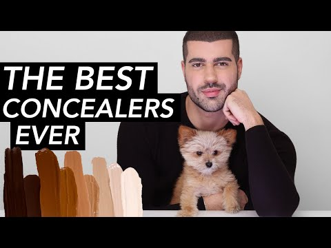 MY 14 TOP RATED CONCEALERS OF ALL TIME! | Hindash