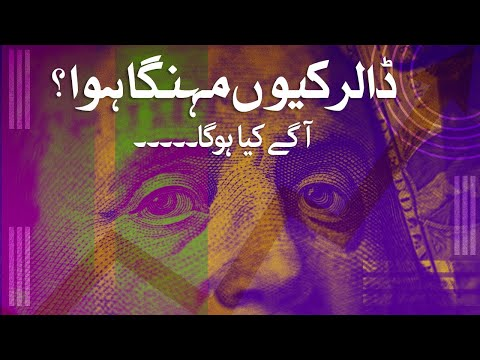 Dollar price in Pakistan, how much will it go up?   Samaa Money